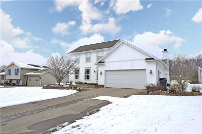 Boardman Single Family Home For Sale: 628 Cathy Ann Dr