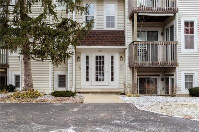 Elyria Condo/Townhouse For Sale: 1219 West River Rd North #D3