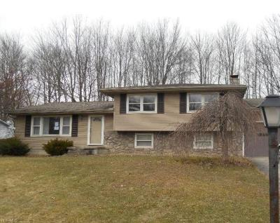 Youngstown Single Family Home For Sale: 120 Country Green Drive