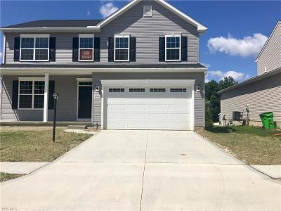 Reminderville Single Family Home For Sale: 10326 Maryland Street