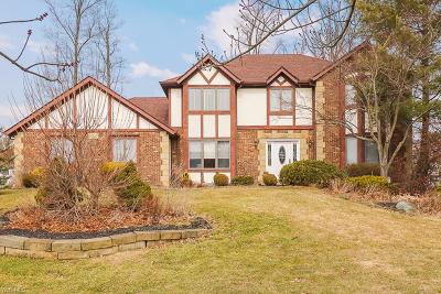 North Royalton Single Family Home For Sale: 6640 Queens Way