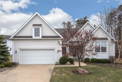 Broadview Heights Single Family Home For Sale: 2841 Boxwood Ct