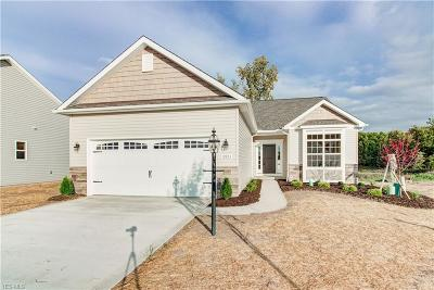 Strongsville Single Family Home For Sale: 13923 Woodhawk Dr