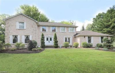 Canfield Single Family Home For Sale: 3725 Tippecanoe Pl