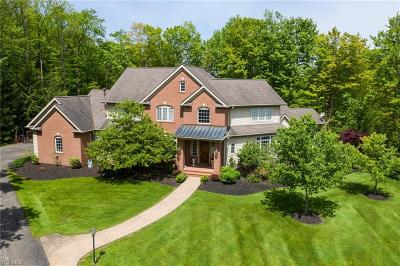 Chagrin Falls Single Family Home For Sale: 116 Ashleigh Dr