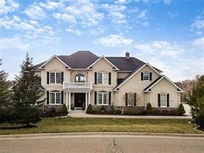 Licking County Single Family Home For Sale: 396 Bryn Du Dr