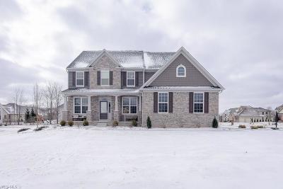 North Royalton Single Family Home For Sale: 5513 River Summit