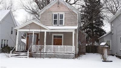 Ashtabula Single Family Home For Sale: 5230 Stark Avenue