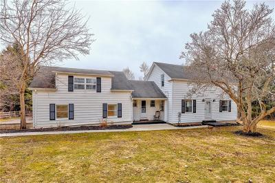 Solon Single Family Home For Sale: 31250 Cannon Rd