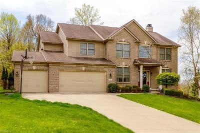North Royalton Single Family Home For Sale: 9253 West Hampton Dr