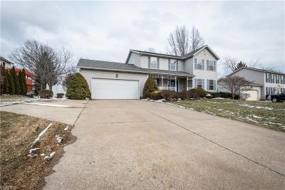 Medina County Single Family Home For Sale: 417 Wintergreen Dr