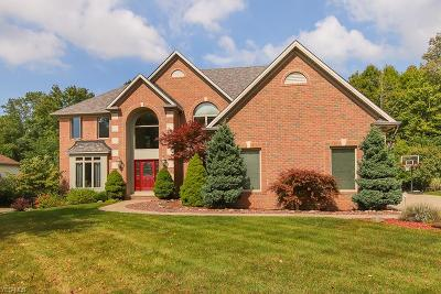 North Royalton Single Family Home For Sale: 9364 Chesapeake Dr