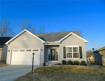 Aurora Single Family Home For Sale: 10459 Dogwood Dr