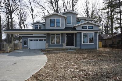 Avon Lake Single Family Home For Sale: 33065 Lake Rd