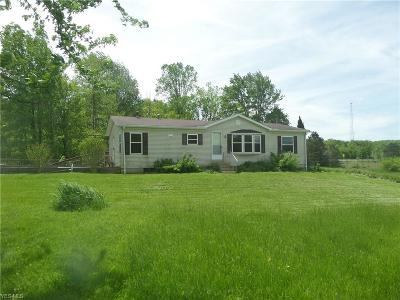 Medina County Single Family Home For Sale: 8255 Lafayette Rd