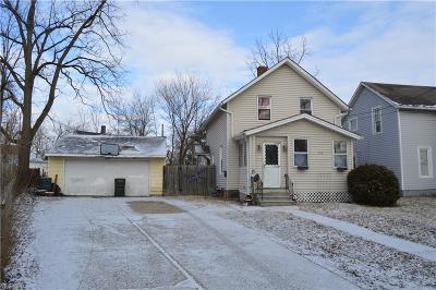 Elyria Single Family Home For Sale: 758 West River Rd North