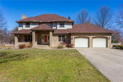Lorain County Single Family Home For Sale: 48116 Rice Rd