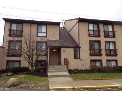 Condo/Townhouse For Sale: 1145 Canyon View Rd #103