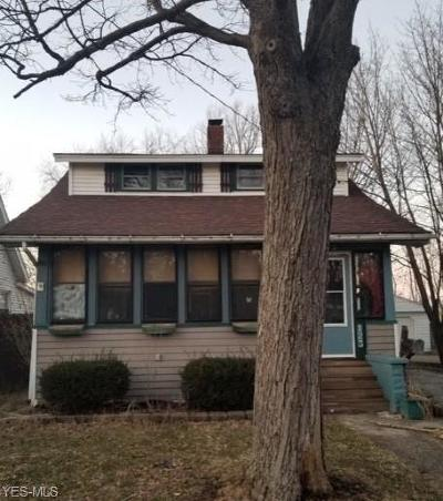 Painesville OH Single Family Home For Sale: $59,900