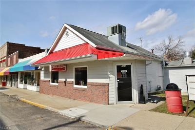 Perry County Commercial For Sale: 121 E Main Street