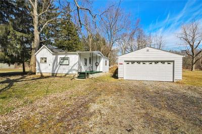 Leavittsburg Single Family Home Active Under Contract: 3832 Meadowbrook Drive