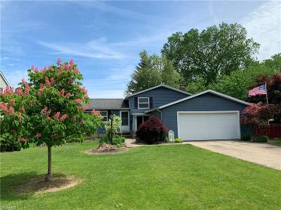 Twinsburg Single Family Home For Sale: 9949 Patton St
