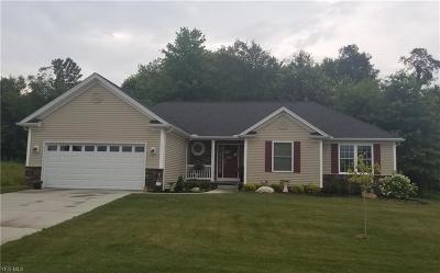 Garrettsville Single Family Home For Sale: 8505 Eagle Creek Dr