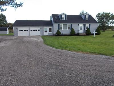 Lorain County Single Family Home For Sale: 44417 Hallauer Rd