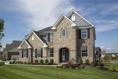 Single Family Home For Sale: 36269 Ravinia Ln