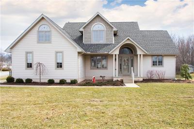 Youngstown Single Family Home For Sale: 605 Mallard Ct