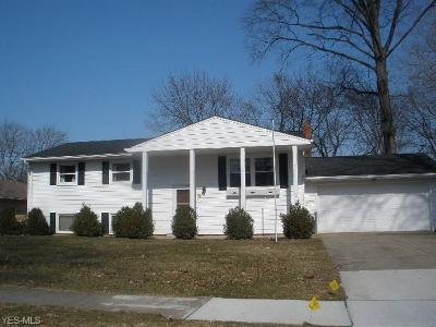Elyria Single Family Home For Sale: 514 Whitman Blvd