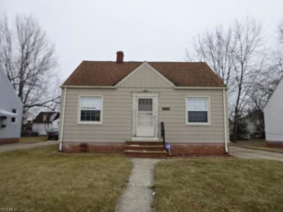 Euclid Single Family Home For Sale: 20700 Morris