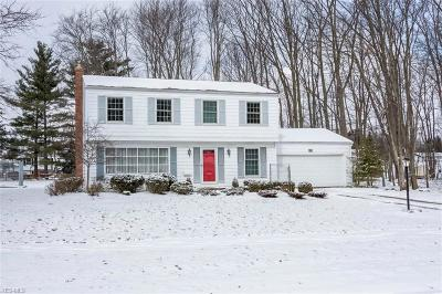 Broadview Heights Single Family Home For Sale: 3475 Meadow Gateway