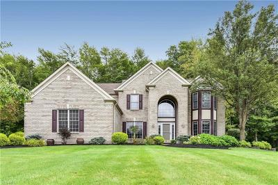 Broadview Heights Single Family Home Contingent: 1153 Fireside Trl