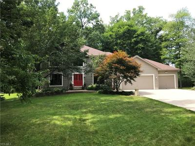 Solon Single Family Home For Sale: 6832 Teasel Ct