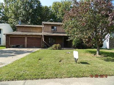 Lorain Multi Family Home For Sale: 2900 Forest Ln