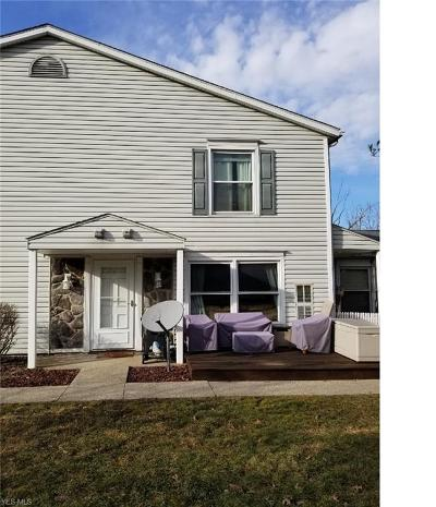 Medina County Condo/Townhouse For Sale: 255 Ivy Hill Ln #A-44