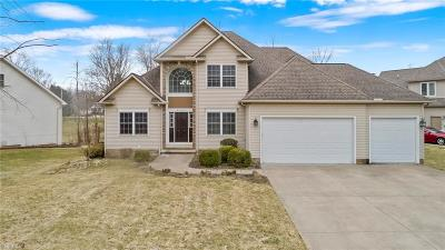 Solon Single Family Home For Sale: 6690 Andre Lane