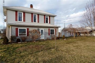 Stockport Single Family Home For Sale: 2795 State Route 377