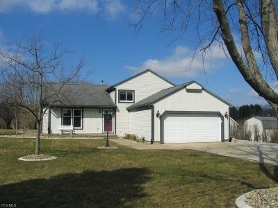 Kent Single Family Home For Sale: 7785 Windy Hill Dr