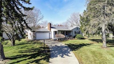 Youngstown Single Family Home For Sale: 2700 Christine Ln