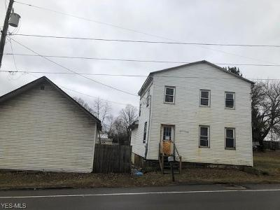 Ashland County Single Family Home For Sale: 171 Us Rt 250