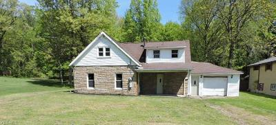 Hubbard OH Single Family Home For Sale: $39,900