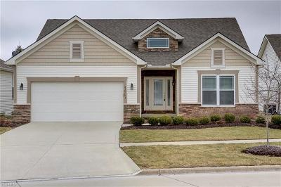 Strongsville Single Family Home For Sale: 22263 Olde Creek Trl