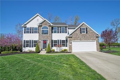 Concord Single Family Home For Sale: 8310 Cambden Crossing Way
