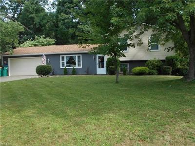 Painesville OH Single Family Home For Sale: $176,000