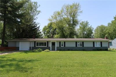 Twinsburg Single Family Home For Sale: 10066 Darrow Rd
