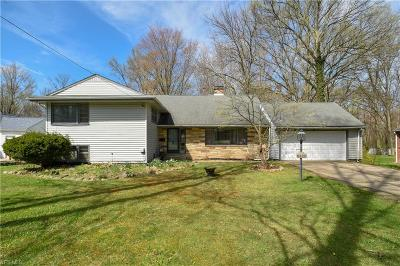 Youngstown Single Family Home For Sale: 6620 Mill Creek Boulevard