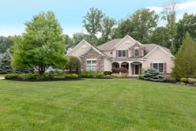 Concord Single Family Home For Sale: 11790 Jamie Dr
