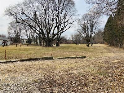 Lorain County Residential Lots & Land For Sale: 2920 West River Rd North